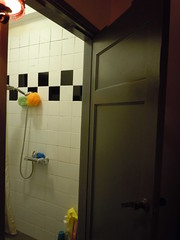 The Flat, The Shower Room