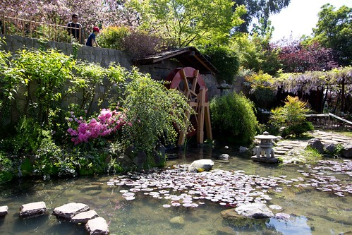 Jardín Japonés en Santiago