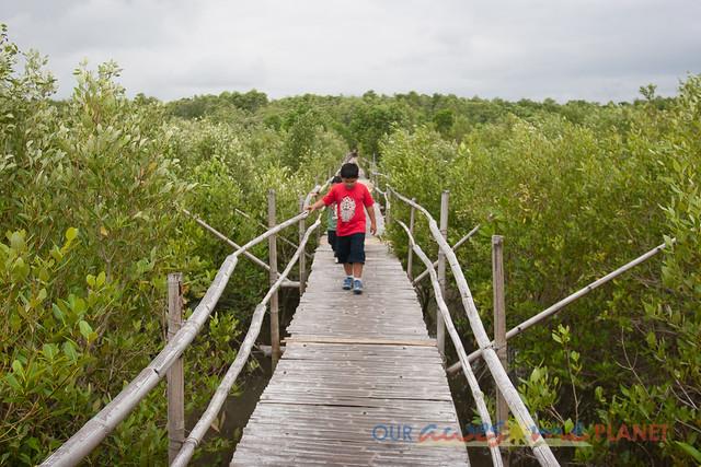 Bakhawan Eco-Park-43.jpg
