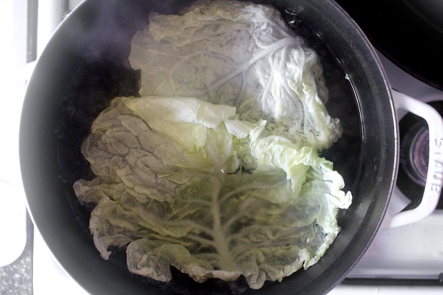 quickly blanching the cabbage leaves