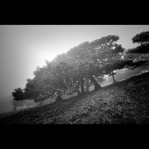 Misty Hills by geirkristiansen.net