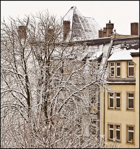 Neustadthof