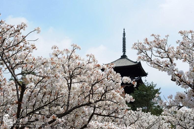 Japan-0797