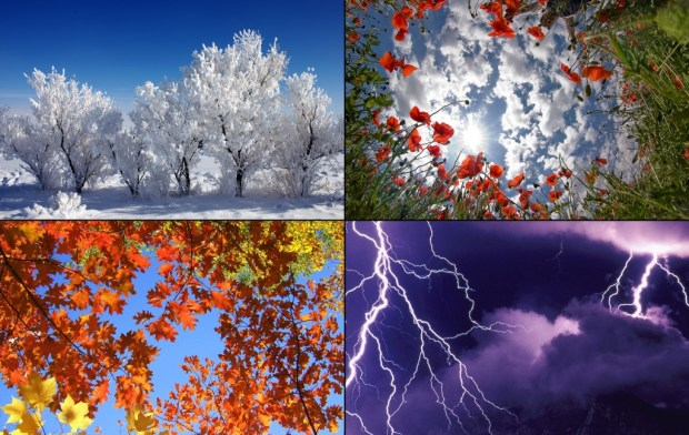 Winter, spring, summer, autumn