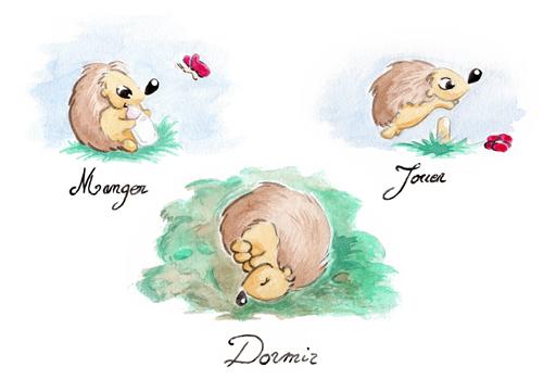 Hérissons - Manger Jouer Dormir