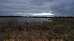 2013-02-24-Staveley Nature Reserve -P1190107