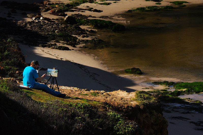 coastal artist ~d nelson