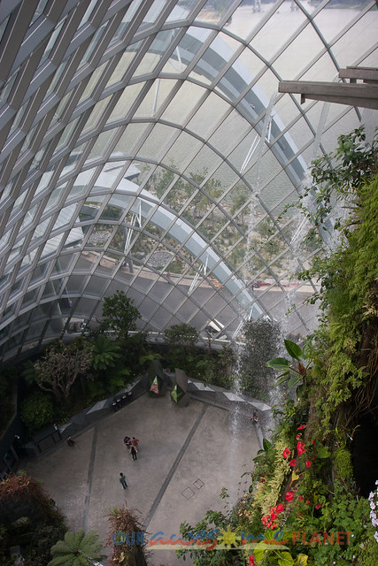 Your Singapore-395.jpg