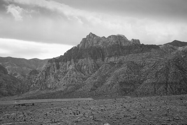 Red Rocks Canyon in BW