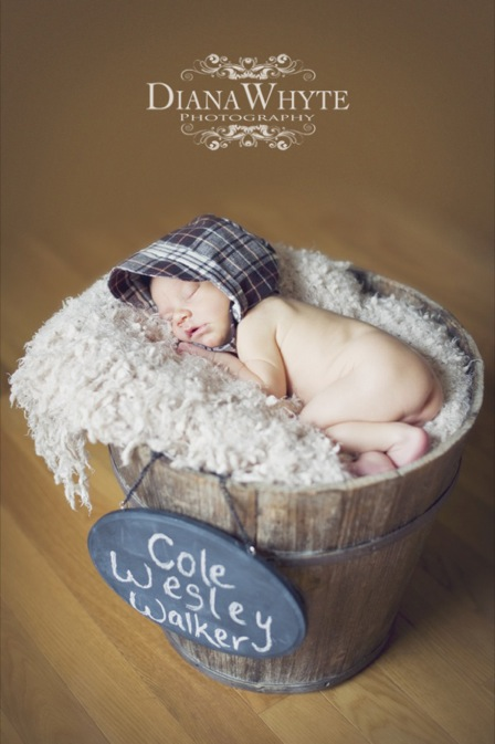 Cole 095