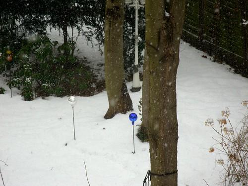 Rosenkugeln im Schnee