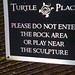 Turtle Place