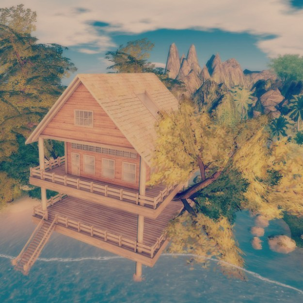 Tree House_001