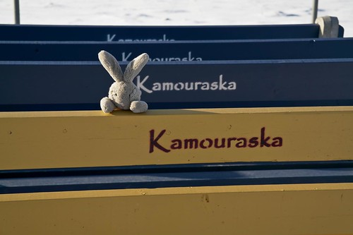 Travel Bunny in Kamouraska - #LexGoFurther - A Ford Escape