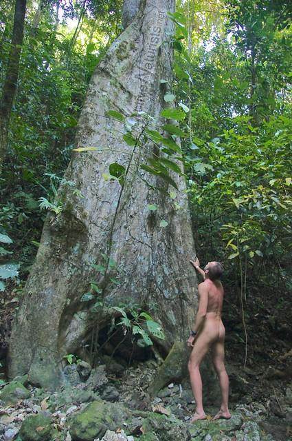 naturist 0003 Palenque, Chiapas, Mexico