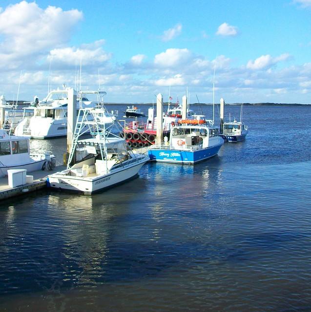 Fernandina Jan10 039