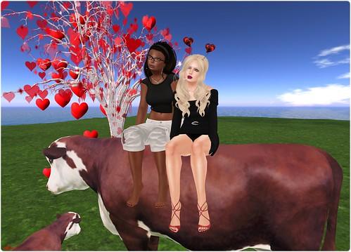 Day 195 - We're so valentine