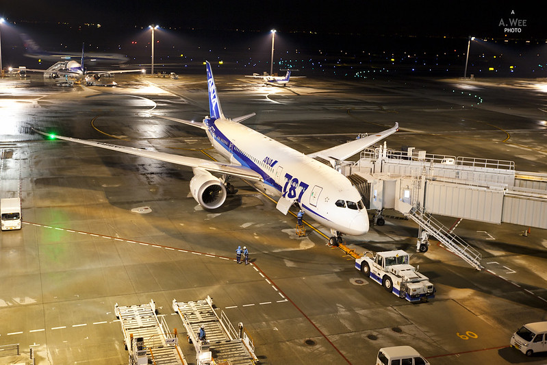 The 787 in ANA Livery