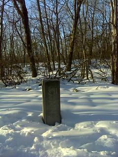 survey marker