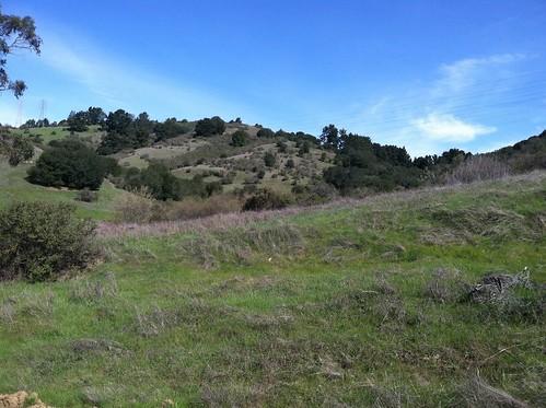 Redtail trail hills