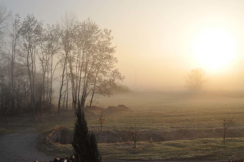 South_Bohemia_Mist_01