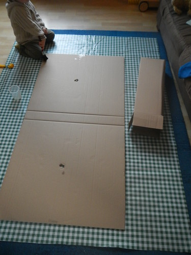 The cardboard box - What's it going to be?!