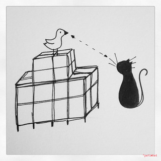 Cats&birds 1