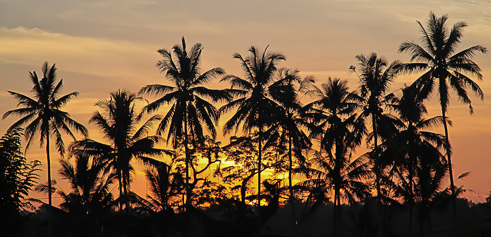 Ubud Sunset