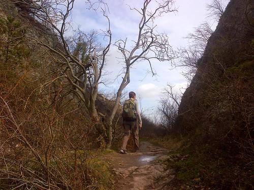 Bernstein, Vosges, hiking