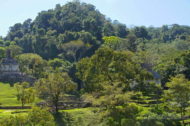 naturist 0023 Palenque, Chiapas, Mexico