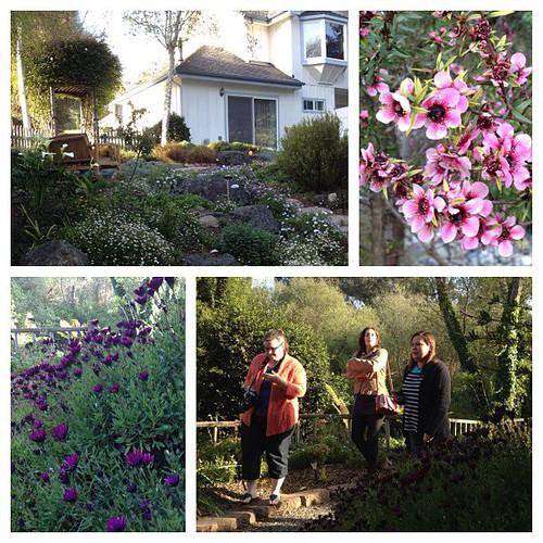 Bluebird Inn Gardens