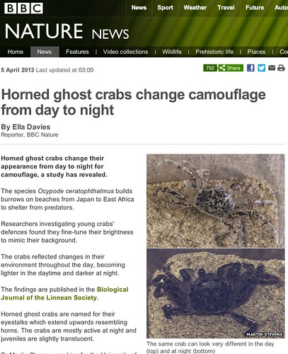 BBC Nature - Horned ghost crabs change camouflage from day to night