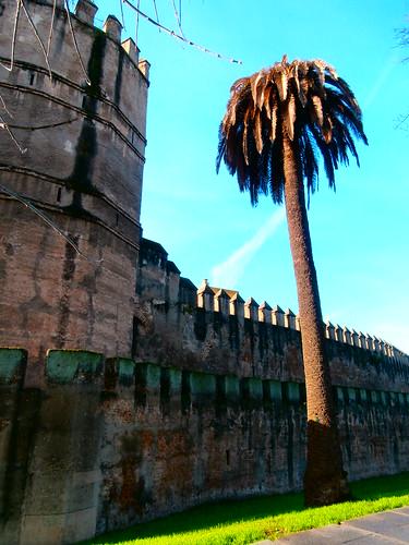 Sevilla. Huelva 2012.