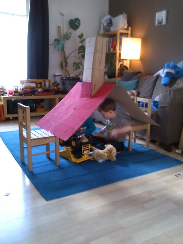 The cardboard box - rabbit house