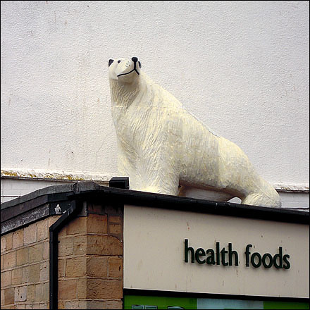 Polar bear above a health food store in Whitby, North Yorkshire