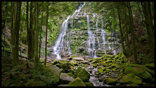 Nelson Falls, Tasmania by jerryatflickr