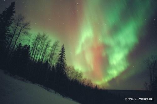 canada Aurora