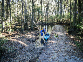 South Edisto River-011