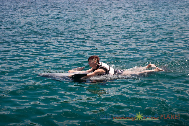 Swim Encounter with Dolphin-10.jpg