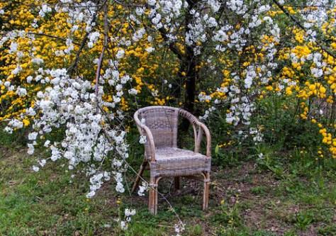 My lunch break chair