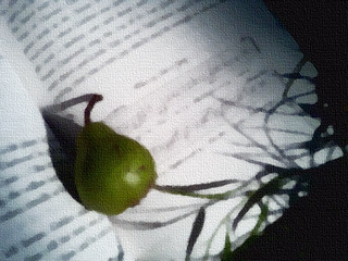 Book Altar - Wild Pear with Music