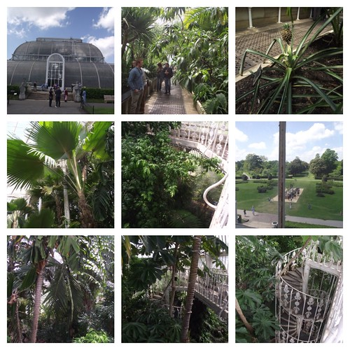 Palm House - Kew