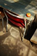 Amelishof: tomato