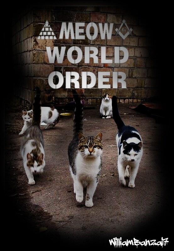 MEOW WORLD ORDER