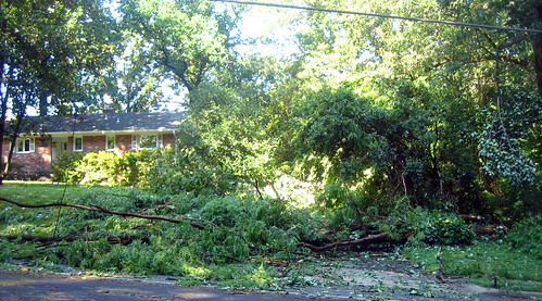 20120630 0848 - storm damage while yardsaleing - tree in driveway - IMG_4525