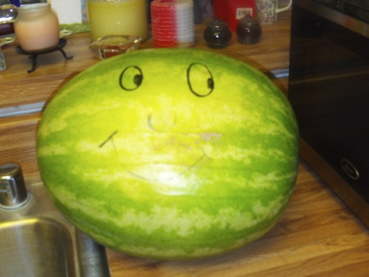 The Smiling Nineteen Pound Water Melon