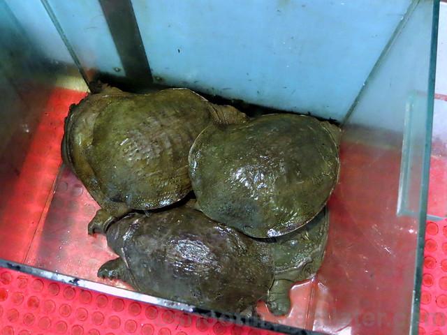 福州海洋平價海鮮餐廳  seafood dinner-003