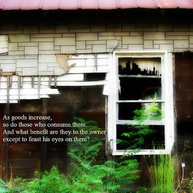 Ecclesiastes 5:11