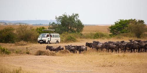 Africa part 1