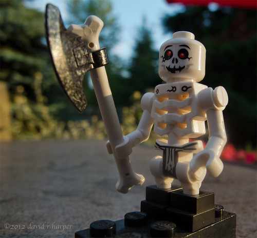07.14.2012 :: 366/196 ...::... Mr Bones by Echo9er